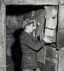 Box Lunch: 1941