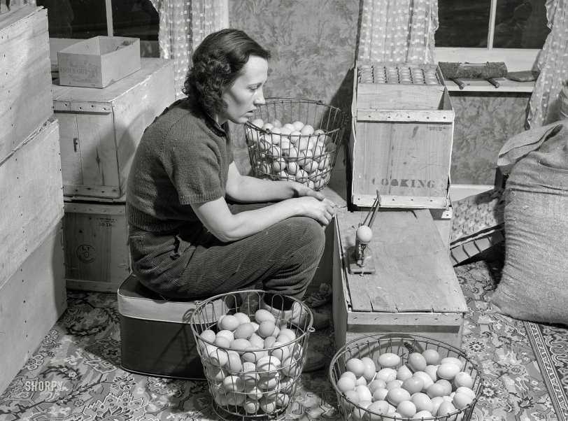 The Eggs and I: 1940