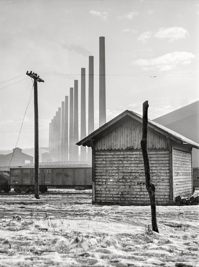 Modern Forest: 1941