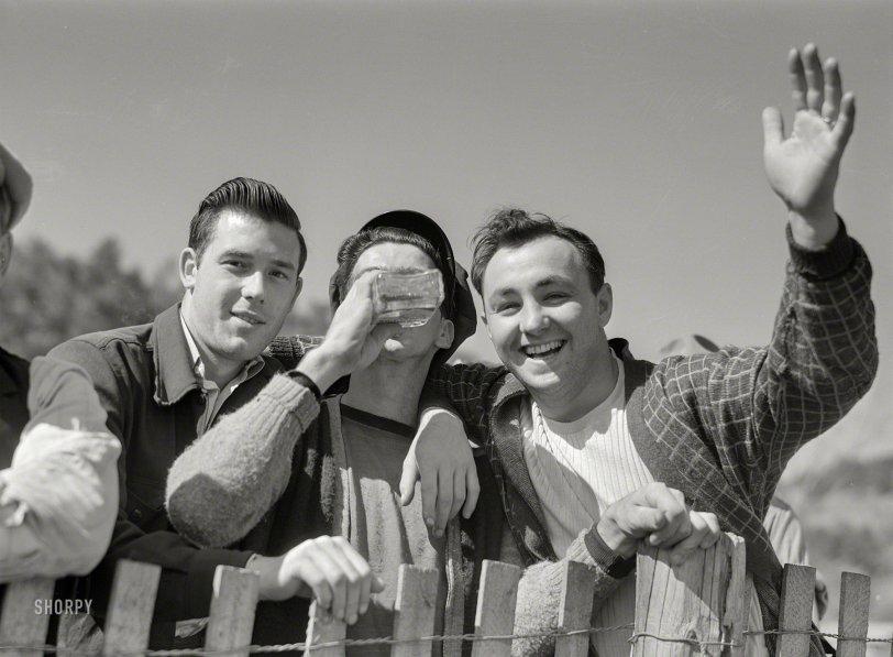 Drinking Buddies: 1941