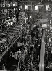 Cane Sugar: 1942