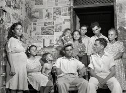 Dynasty: 1942