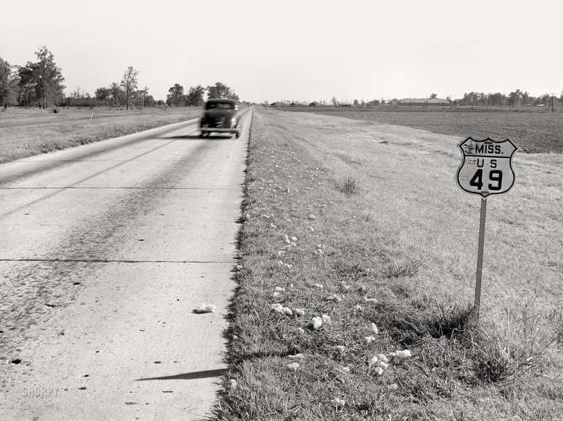 Fallen Fiber: 1939