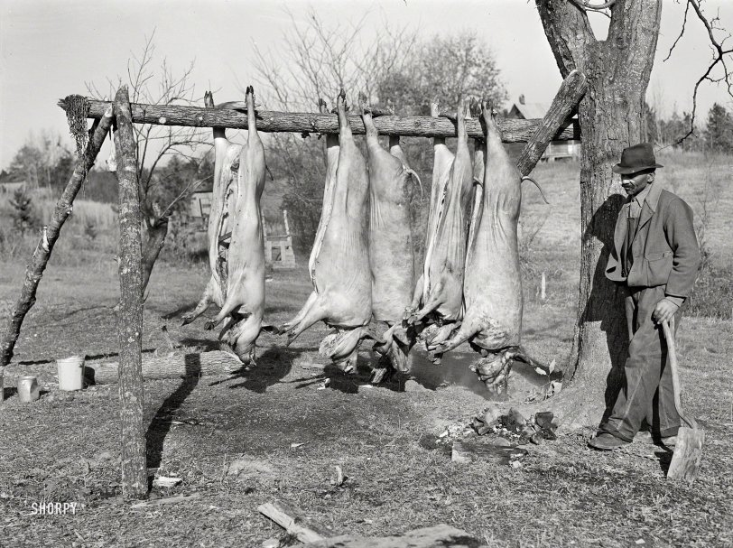 When Pigs Fly: 1939