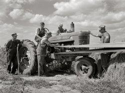 Farmall M: 1941
