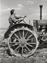 No Man's Land: 1940