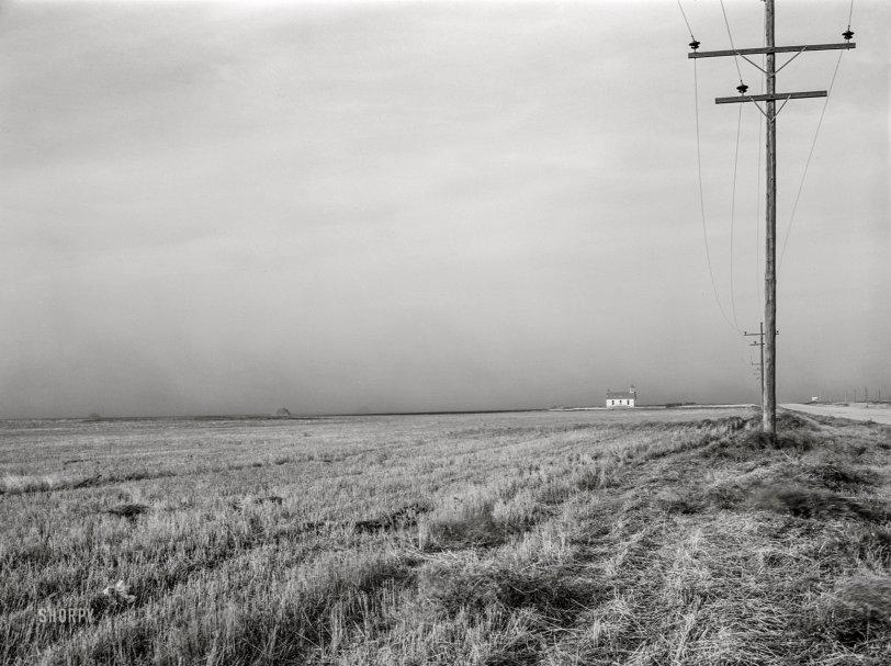 Dusty Wheatfield: 1940