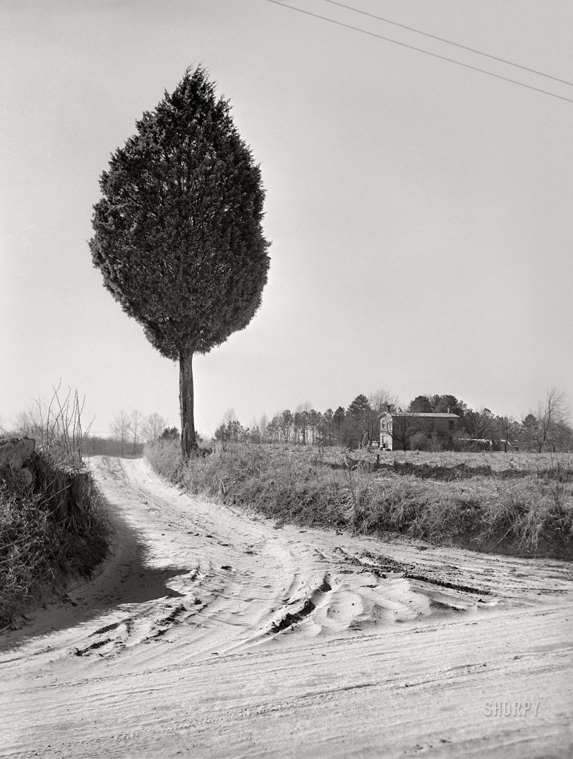 Rural Route: 1941