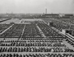 The Herd: 1941