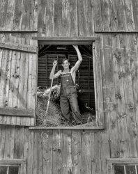 Straw Man: 1941