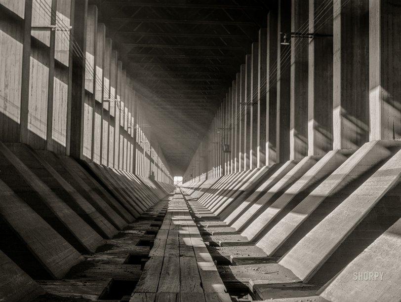 Below Docks: 1941