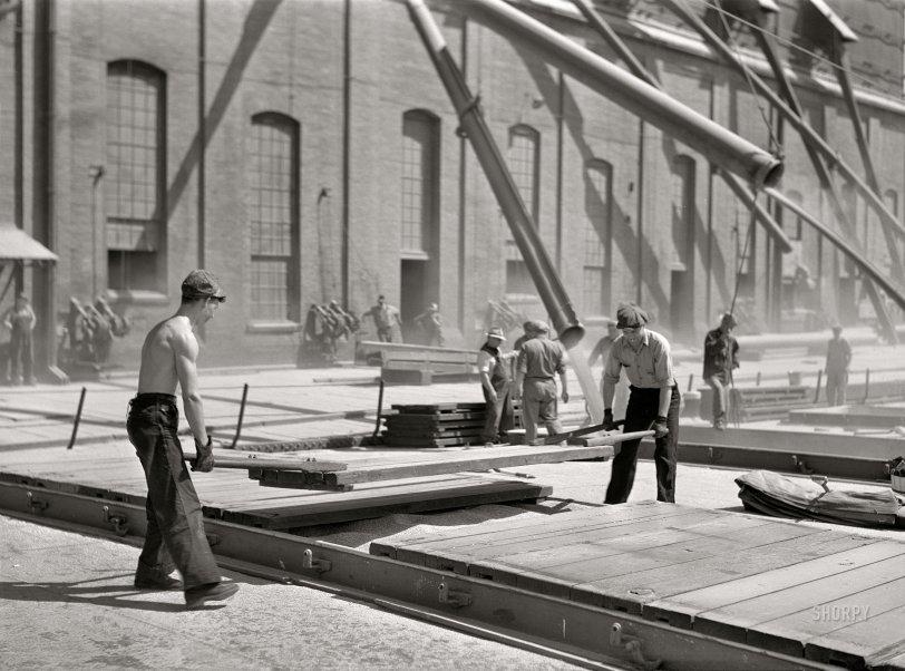 Wheat Spouts: 1941