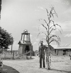 The Stalker: 1940