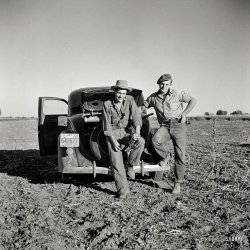 Two Guys: 1941