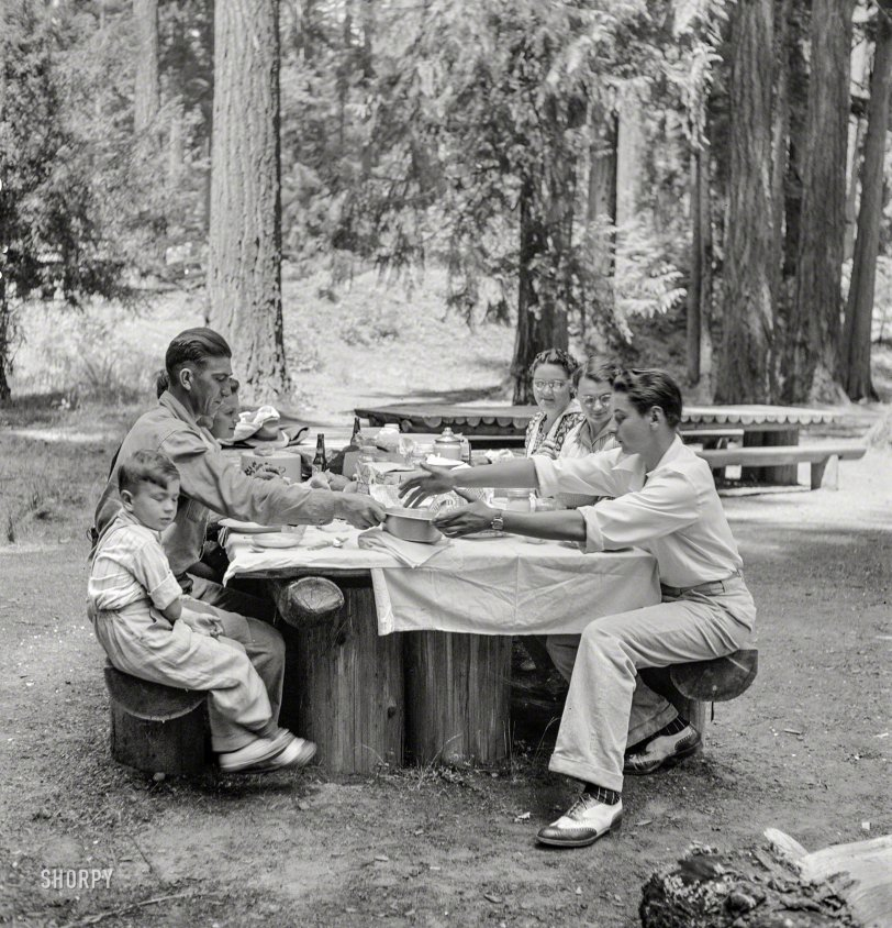 Picnic in the Park: 1942