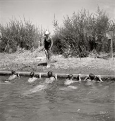 The Swimming Lesson: 1942