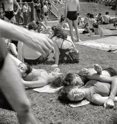 Splendor in the Grass: 1942