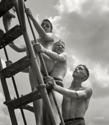 The Ascent of Man: 1943