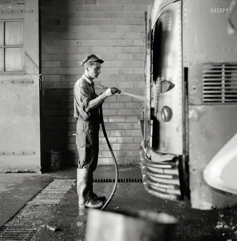 Dog Wash: 1943