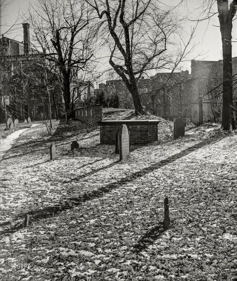 Dark Garden: 1938