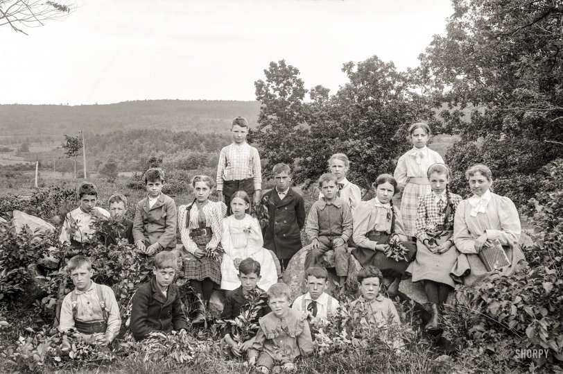 Young Sprouts: 1900
