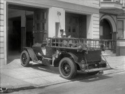 Dalmatian Wanted: 1920
