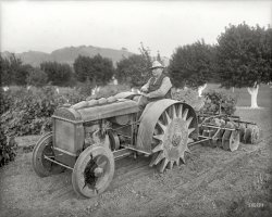 The Squeaky Wheel: 1918