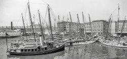 Baltimore Luggers: 1905