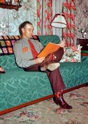 Domestic Pardner: 1952