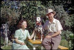 One Fine Day: 1951