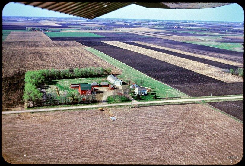 Farmville: 1952