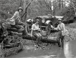 Studebanglers: 1919