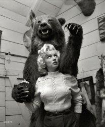 Bearilyn: 1953