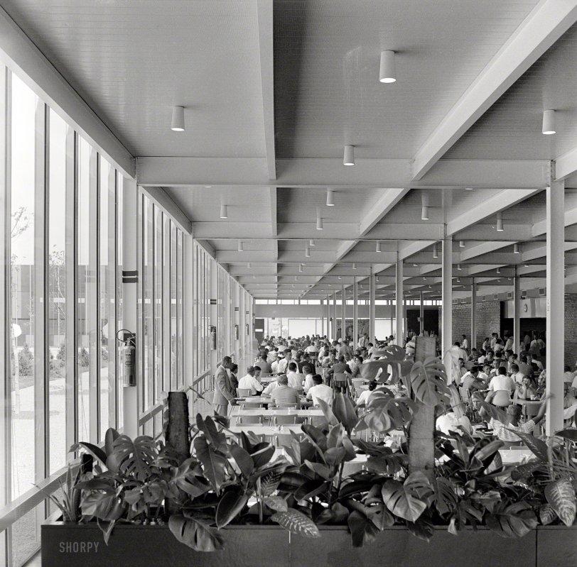 The Whiteboard Jungle: 1957