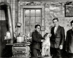 Buffalo Boys: 1910