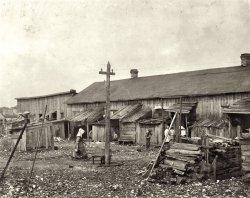Cannery Row: 1912