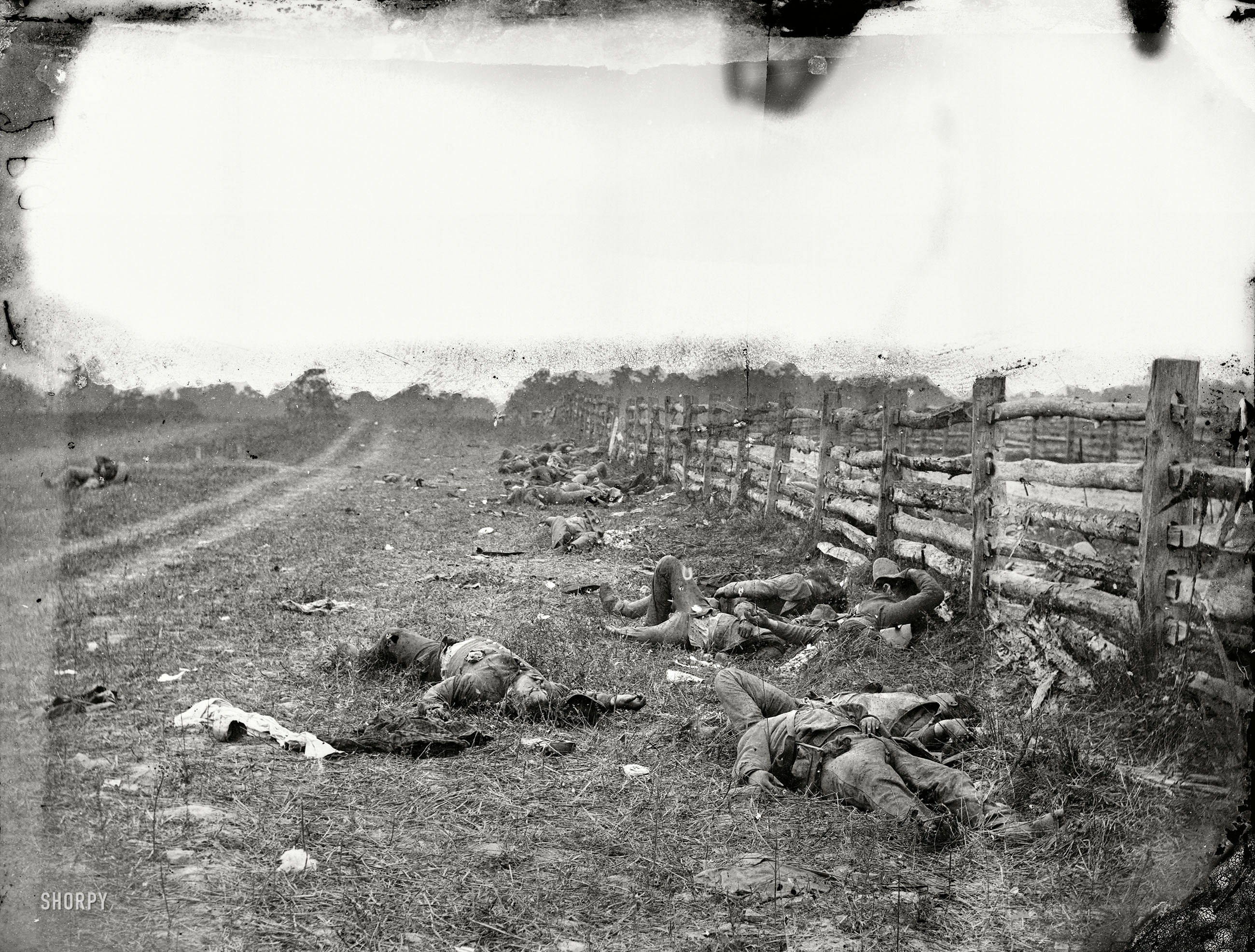 "BUY PRINT September 1862. ""Antietam, Maryland. Confederate dead by a fence  on the Hagerstown road."" The first major battle of the Civil War on Union  ..."
