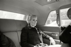 Driving Ms. Crazy: 1968