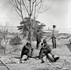Civil War Scouts: 1865