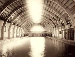 Plunge Bathers: 1891
