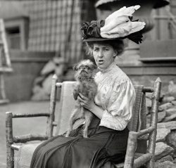 Feathers and Fur: 1908