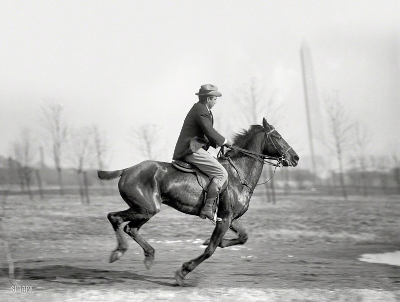 A Fast Horse: 1914