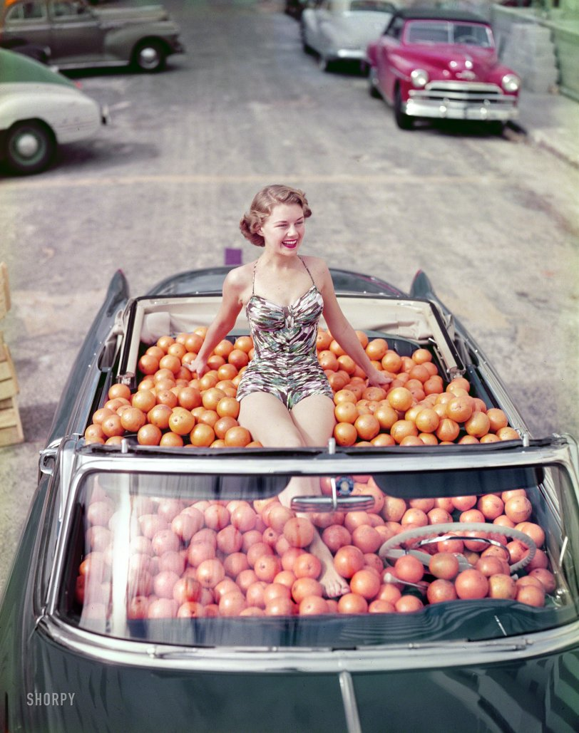 Fresh-Squeezed: 1951