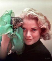 To Catch a Kitten: 1954