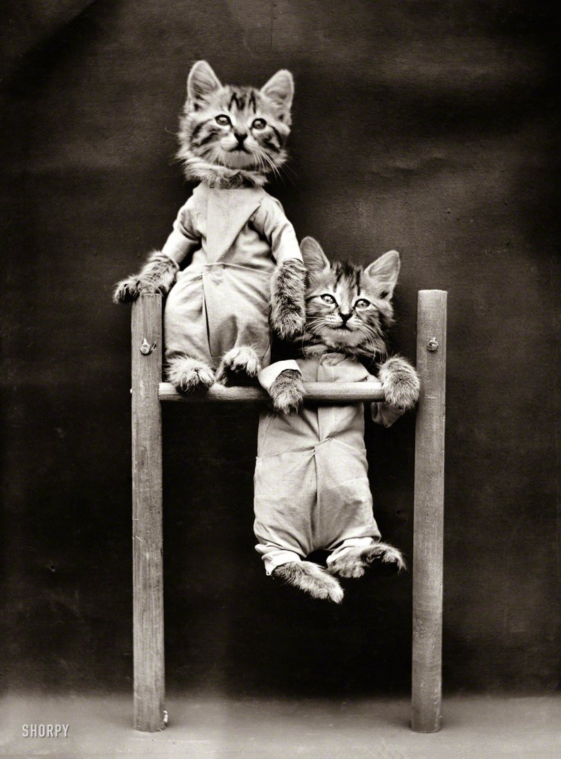 Hang On There: 1914