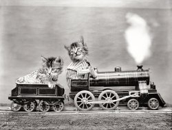 Kittycat Express: 1914