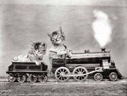 Kittycat Express: 1914