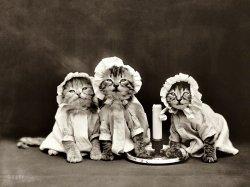 Bedtime Story: 1914