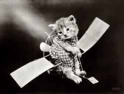 Kitty Hawk: 1914
