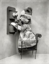 Animal Call: 1914